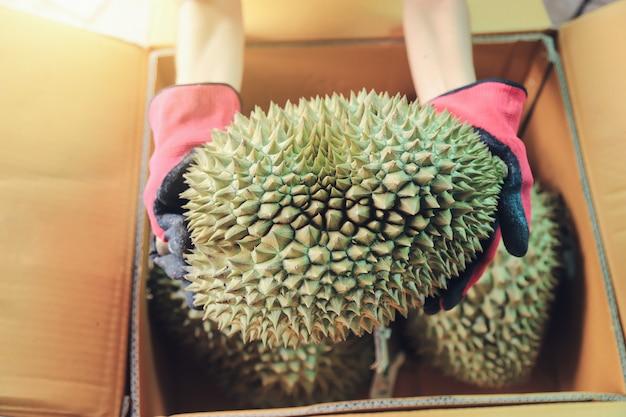 Rolnik posiadający durian do pakowania, aby wysłać dostawę