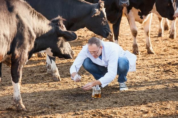 Rolnik sprawdza próbki biologiczne w gospodarstwie