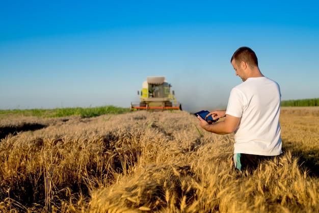 Rolnik sprawdzający postęp pola pszenicy, trzymając tabletkę za pomocą internetu.