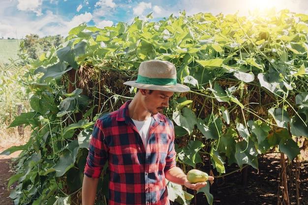 Rolnik stojący przed plantacją bakłażana w słoneczny dzień. portret rolnika na gruntach rolnych.