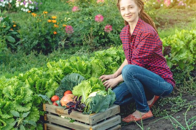 Rolnik szczęśliwy kobieta zbiera świeże warzywa