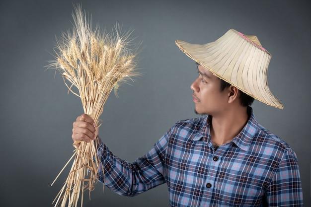 Rolnik trzyma jęczmienia na szarym tle.