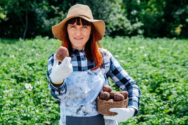 Rolnik trzyma ziemniaki w wiklinowym koszu w słomkowym kapeluszu w swoim ogródku warzywnym