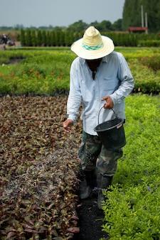 Rolnik używający nawozu