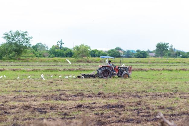Rolnik w ciągniku przygotowującym ziemię z kultywatorem