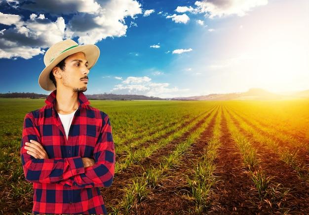 Rolnik w kapeluszu przed farmą upraw kukurydzy plantacji. pracownik rolny w polu.