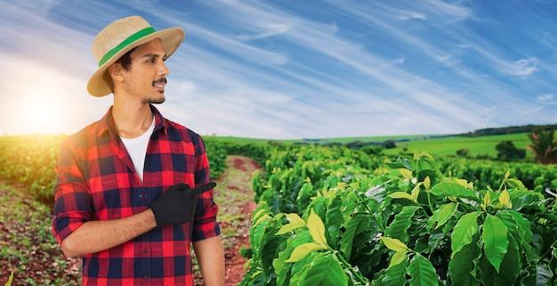 Rolnik w kapeluszu przed uprawą plantacji kawy, w dzień zachodu słońca na farmie. pracownik rolny w polu.