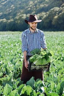Rolnik w kapeluszu trzyma koszyk ze zbiorami kapusty na własnej plantacji, świeże dostawy.