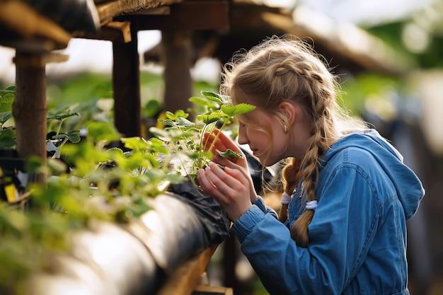 Rolnik w kraciastej koszuli uprawia truskawki w szklarni