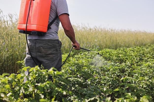Rolnik z opryskiwaczem mgłowym leczy plantację ziemniaków przed szkodnikami i infekcjami grzybiczymi. używaj chemikaliów w rolnictwie. rolnictwo i agrobiznes. przetwarzanie zbiorów. ochrona i pielęgnacja.