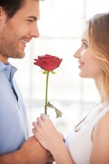 Romantyczna chwila. wesoła młoda kochająca para trzyma razem czerwoną różę i uśmiecha się stojąc twarzą w twarz