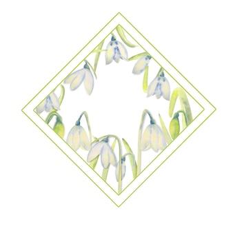 Romantyczna wiosna rama z przebiśniegi na wewnętrznej krawędzi na białym tle na białym tle. akwarela ilustracja.