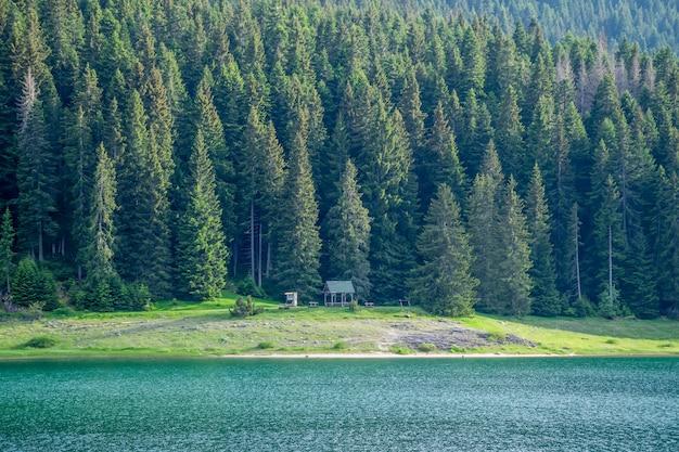 Romantyczne drewniane ławki w pobliżu czarnego jeziora w parku narodowym durmitor. czarnogóra