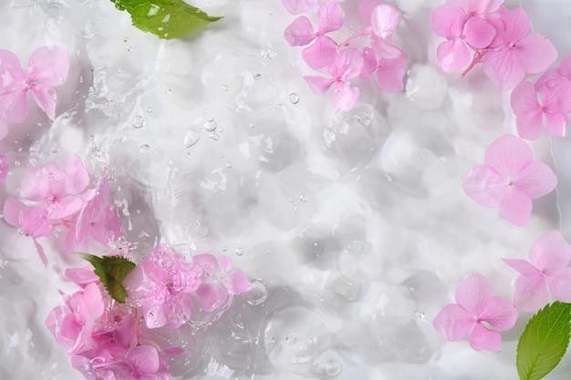 Romantyczne i piękne różowe kwiaty hortensji w wodzie jako kwiatowy szablon z miejscem na kopię.