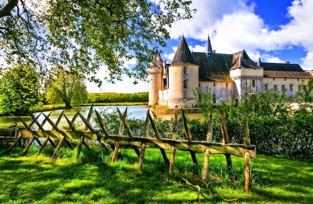 Romantyczne średniowieczne zamki doliny loary, piękny le plessis bourre. francja