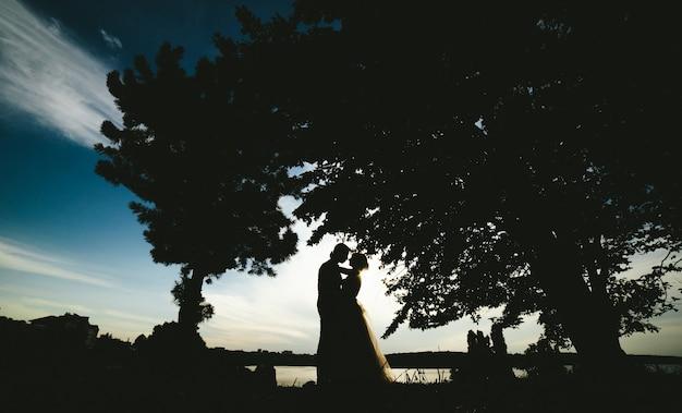 Romantyczne zaręczyny szczęście para elegancja
