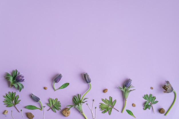 Romantyczny kwiatowy wzór tła walentynki tła jaskier na fioletowym tle do projektowania kart i wesela