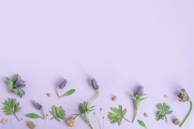 Romantyczny kwiatowy wzór tła walentynki tło jaskier na fioletowym tle