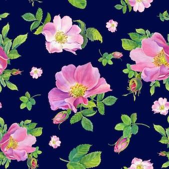 Rose hip. akwarela dzikiej róży kwiaty na ciemnym niebieskim tle. ilustracja.