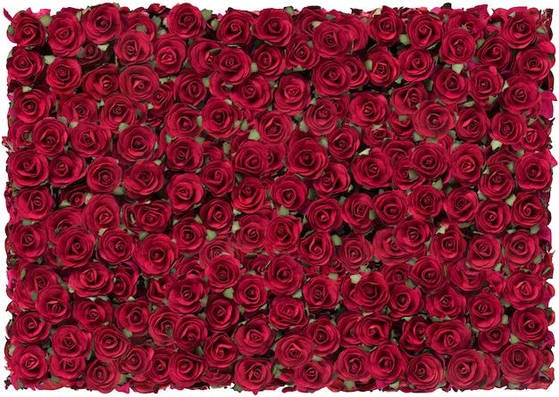 Rose red piękne tło na walentynki.