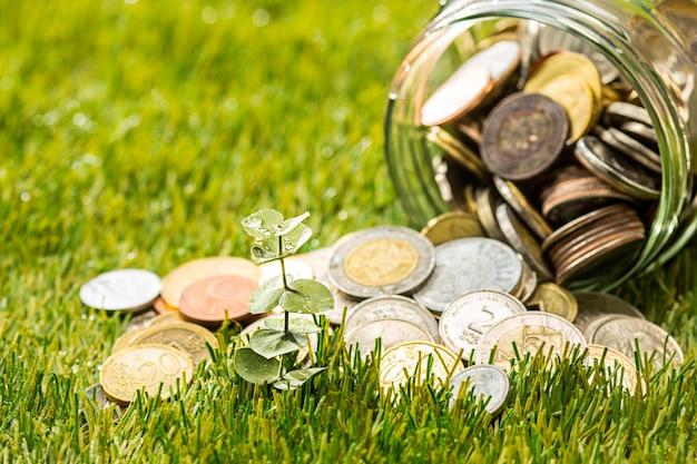 Roślin rosnących w szklanym słoju monet za pieniądze na zielonej trawie