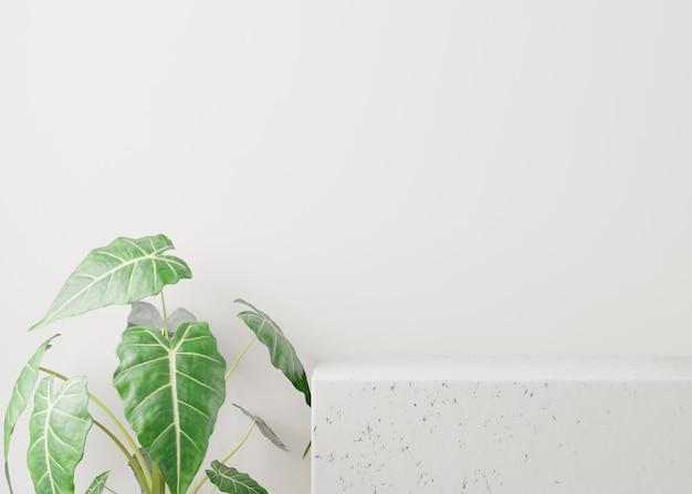 Roślin z zielonymi liśćmi w pobliżu białego stołu