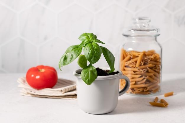 Roślina bazylii doniczkowej w metalowym kubku makaron w szklanym pojemniku i pomidor na kuchennym stole kuchnia włoska