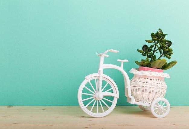 Roślina domowa w doniczce rowerowej