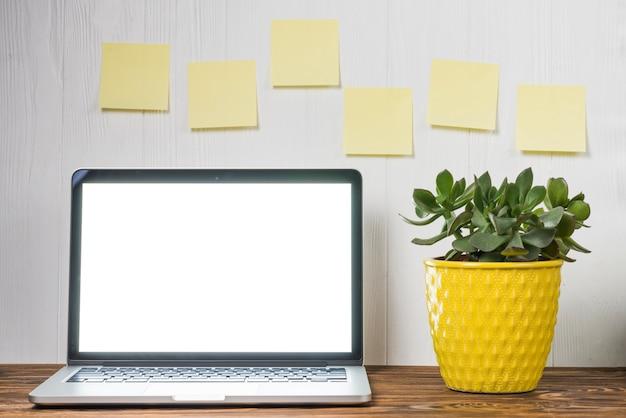 Roślina i karteczki w pobliżu laptopa