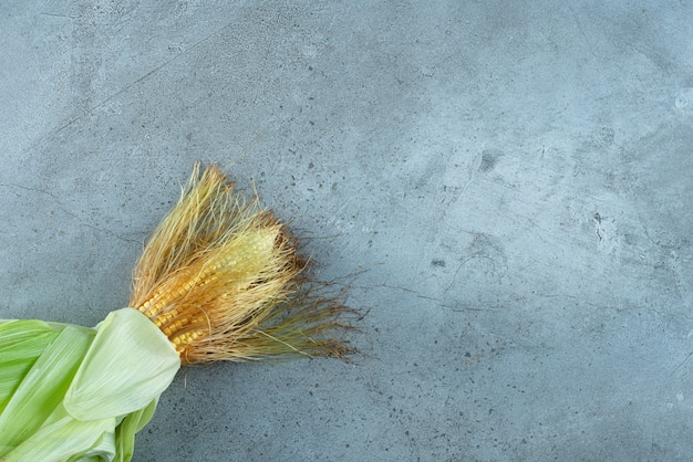 Roślina kukurydziana pokryta zielonymi liśćmi na ziemi. zdjęcie wysokiej jakości