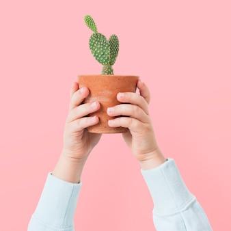 Roślina rodzicielska trzymająca kaktus doniczkowy