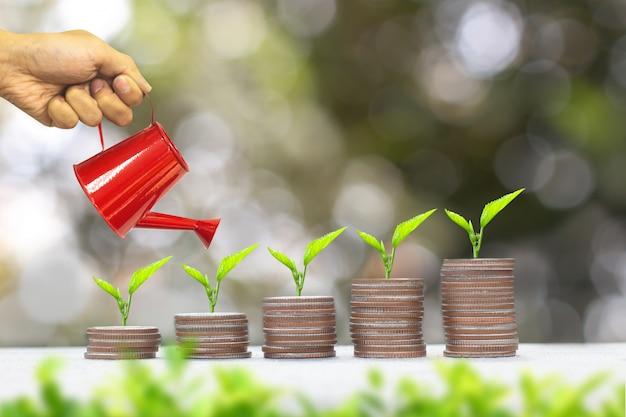 Roślina rośnie na stos monet pieniędzy. zapisywanie koncepcji pieniędzy.