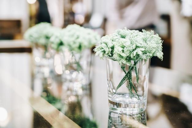 Roślina w wazon dekoracji na stole