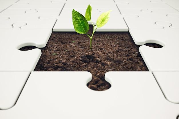 Roślina wyrasta z puzzli. wzrost i rozwój poprzez koncepcję pracy zespołowej