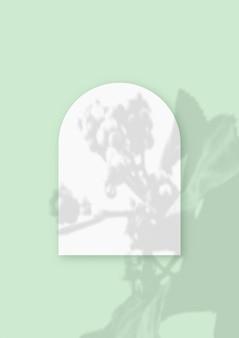 Roślinne cienie nałożone na arkusz w kształcie łuku teksturowanego białego papieru na zielonym tle stołu