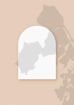 Roślinne cienie nałożone na arkusz w kształcie łuku z teksturowanego białego papieru na beżowym tle stołu