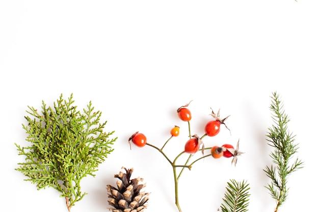 Rośliny świąteczne na białym tle. koncepcja płaskiego lasu i natury
