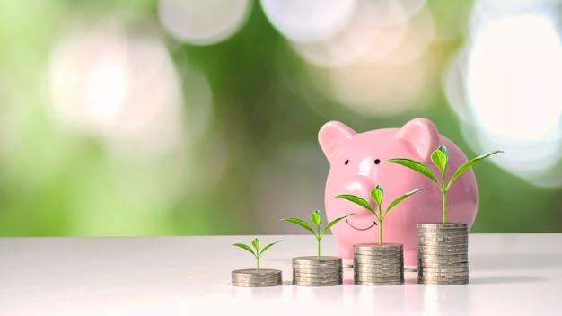 Rosnące drzewa na stosach pieniędzy obejmują różową świnkę-skarbonkę, pomysły na oszczędzanie pieniędzy i własny plan emerytalny.