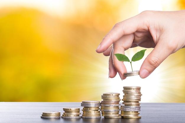 Rosnące pieniądze dla twojej firmy. oszczędność pieniędzy na inwestycje.