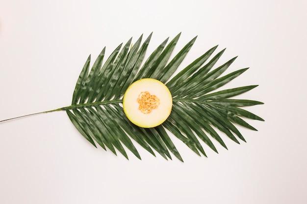 Round kawałek soczysty melon przy palmowym liściem