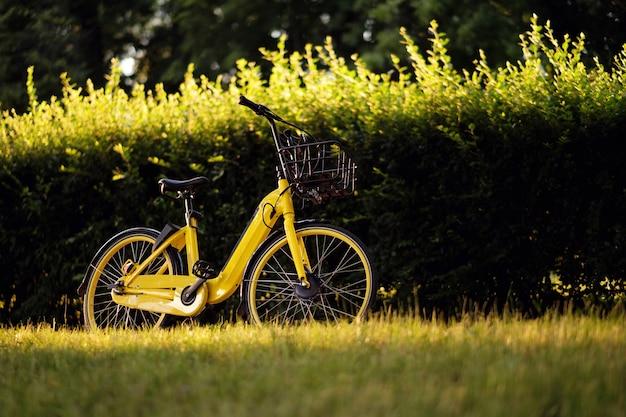 Rower elektryczny, żółty rower elektryczny, ebike w parku