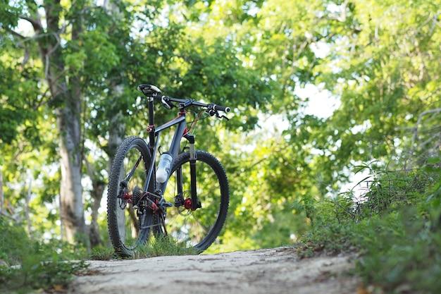 Rower górski stoi na szlaku w letnim lesie.
