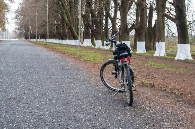 Rower na drodze wśród drzew poti georgia