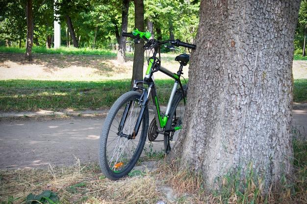 Rower oparty o grube drzewo w parku.