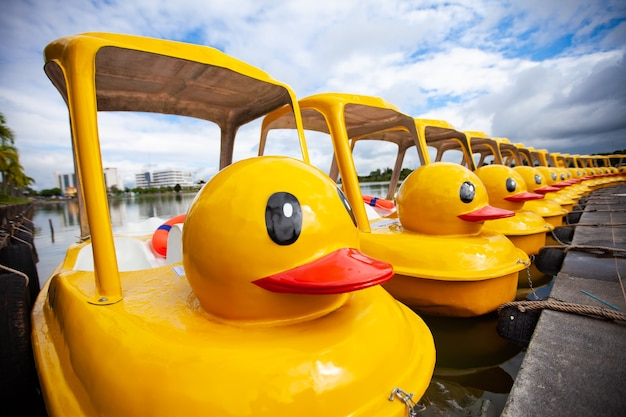 Rower wodny z żółtą kaczką w parku