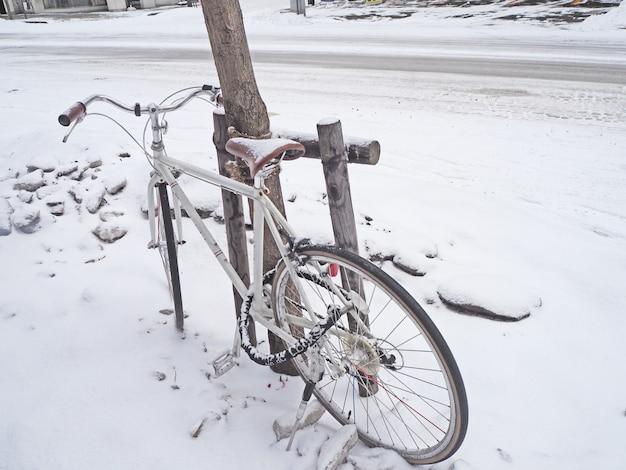 Rower zaparkowany zimą obok drzewa