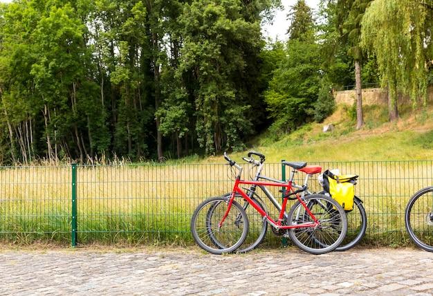 Rowery w parku latem, europa. profesjonalne ogrodnictwo, europejski zielony krajobraz, dekoracja roślin ogrodowych
