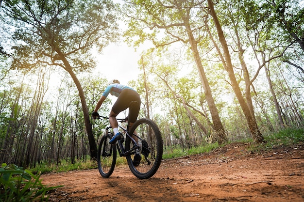 Rowerzyści górscy trenujący w lesie