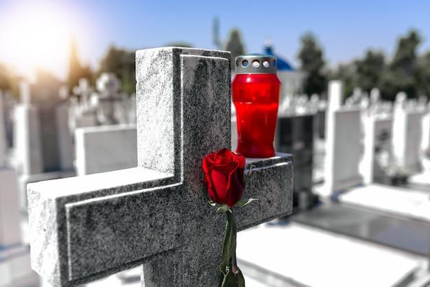 Róża na cmentarzu z nagrobkiem