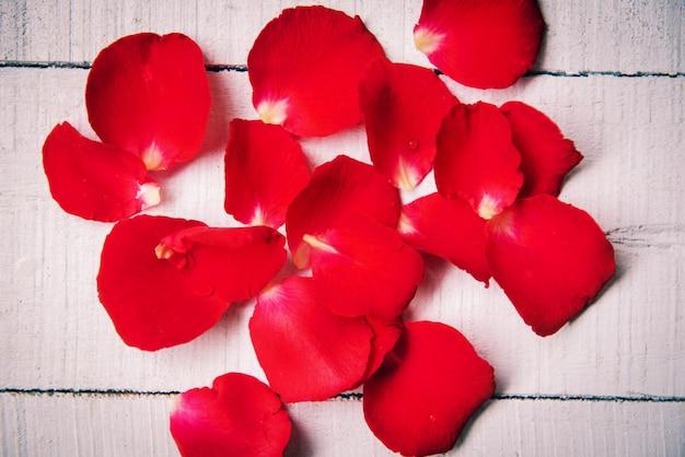 Różani płatki na drewnianym tle, tonują rocznika stylowego klasyka, kwiatu czerwieni róży płatki na walentynki /
